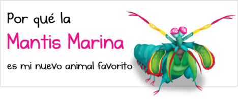 mantis_shrimp_bigES