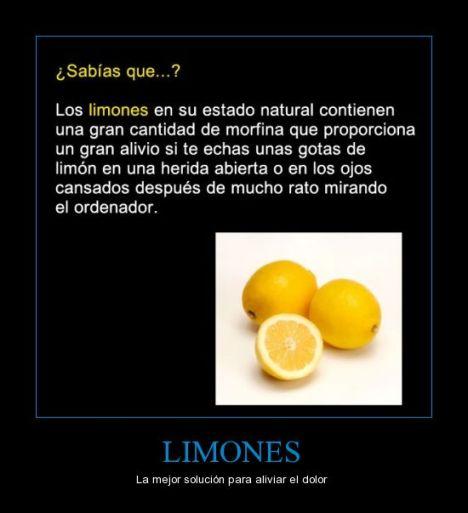 CR_698089_limones
